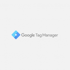 google tag manager with beaver builder